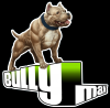 BULLY MAX 60 TABLETS VITAMIN MINERAL SUPPLEMENT FOR DOGS (μικρογραφία)